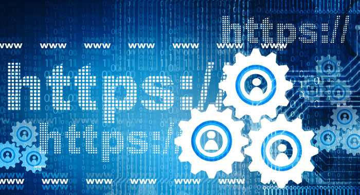 https-network security