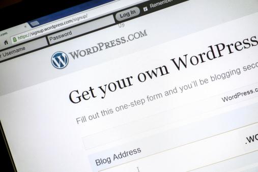 Majority of WordPress users not backing up, survey indicates